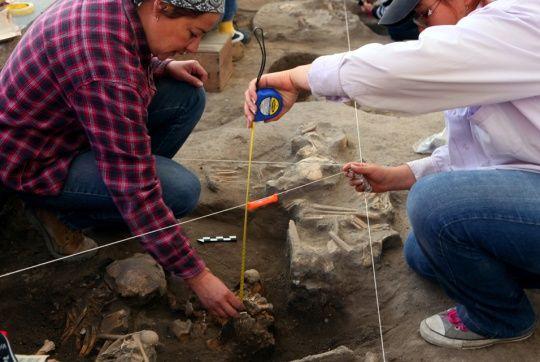 Arqueólogos encontraron restos óseos de 800 años de antigüedad en México.