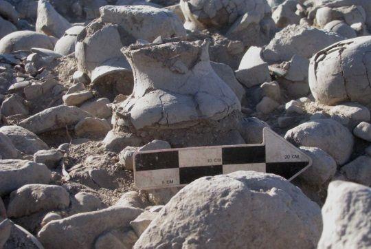 Restos incinerados encontrados en macetas en México