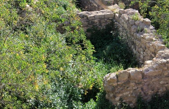 yacimiento cartagena
