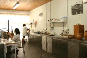 servicio arqueologia castellon