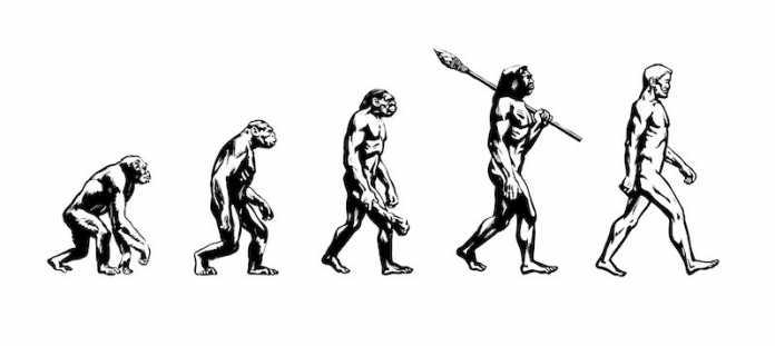 antepasados del hombre lista