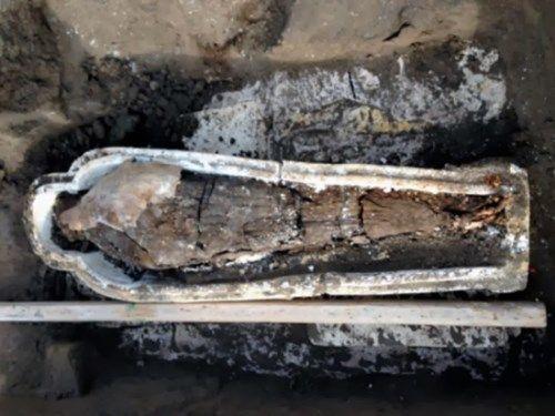 momia dakahliya