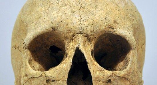 craneo antiguo sahara