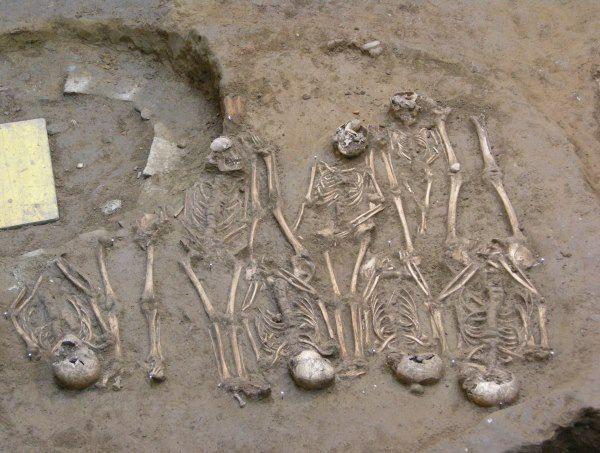 esqueletos galeria uffizi