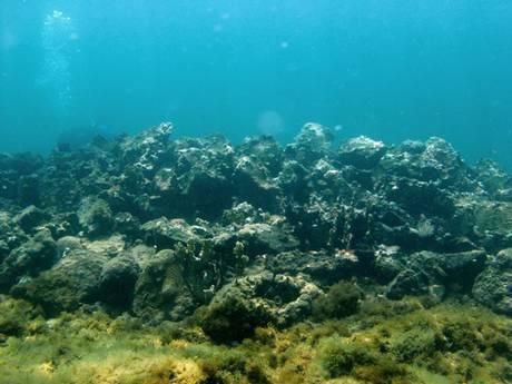 Restos de la Santa María en aguas haitianas