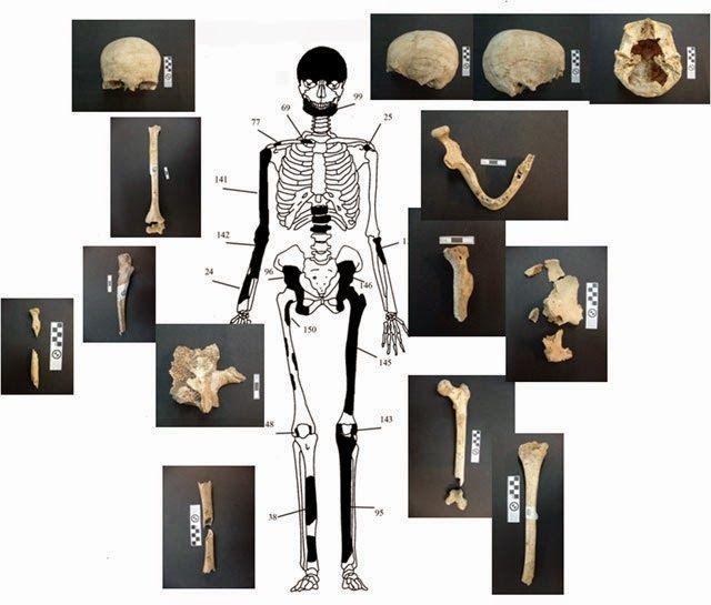 Representación y restos del esqueleto de la mujer encontrada en Anfípolis