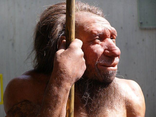 Los neandertales desaparecieron de la Península Ibérica antes que del resto de Europa.
