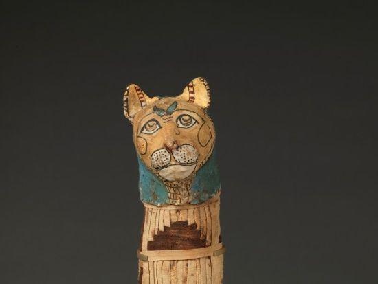 Momia de Gato.