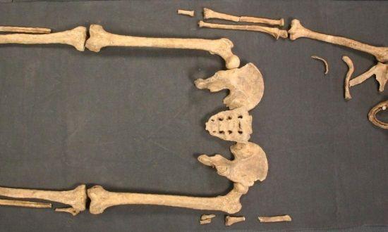 Las muestras extraídas de este equeleto muestran que la Lepra podría haber llegado a Escandinavia desde Gran Bretaña.