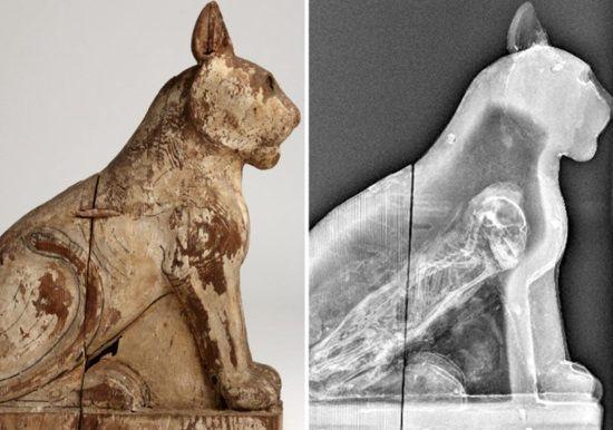 La Universidad de Manchester escaneó más de 800 momias de animales para ver qué había en su interior.