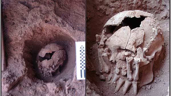 El cráneo decapitado más antiguo de América ha sido encontrado en Brasil.
