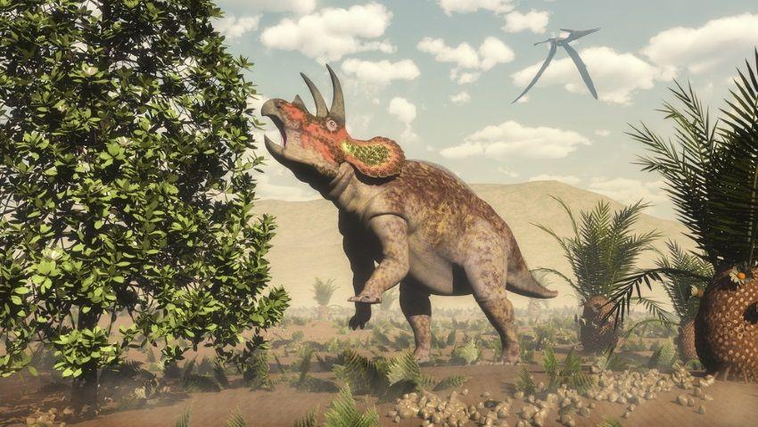 triceratops orden ornithischia