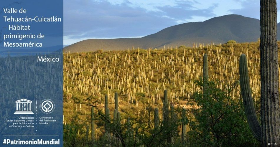 Valle de Tehuacán-Cuicatlán