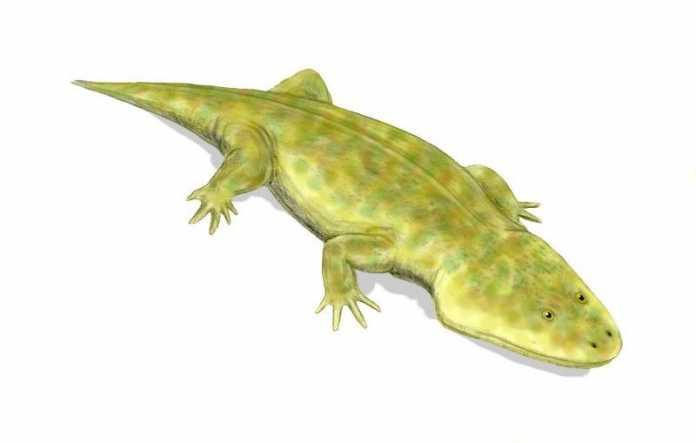 extincion masiva triasico jurasico metoposaurus