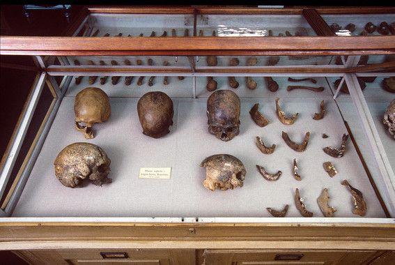 prehistoria america