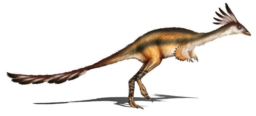 alvarezsaurus dinosaurio