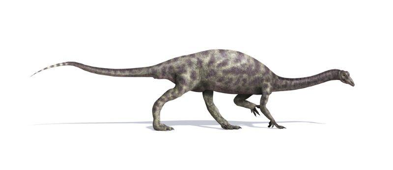 dinosaurio Anchisaurus
