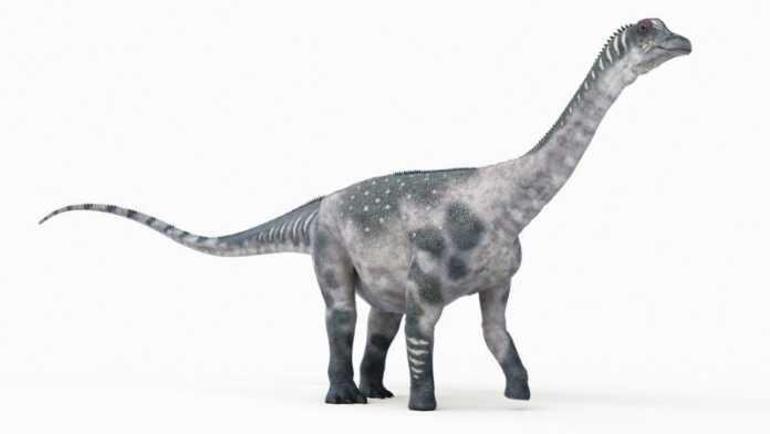 Antarctosaurus dinosaurio