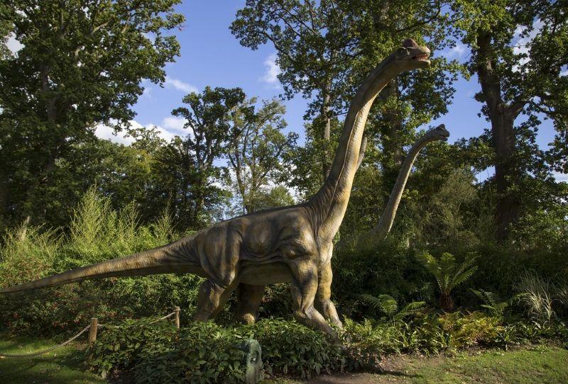 brontosaurus o apatosaurus