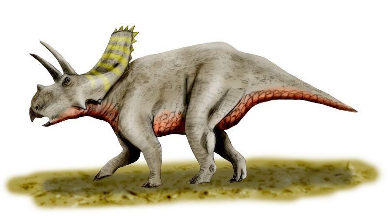 dinosaurio Arrhinoceratops