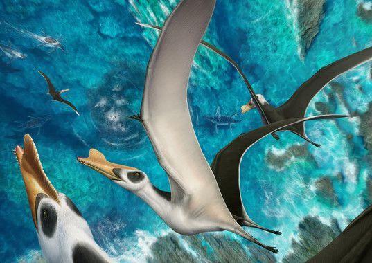 recreacion de pterosaurus