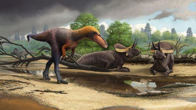 dinosaurio primo tyrannosaurus