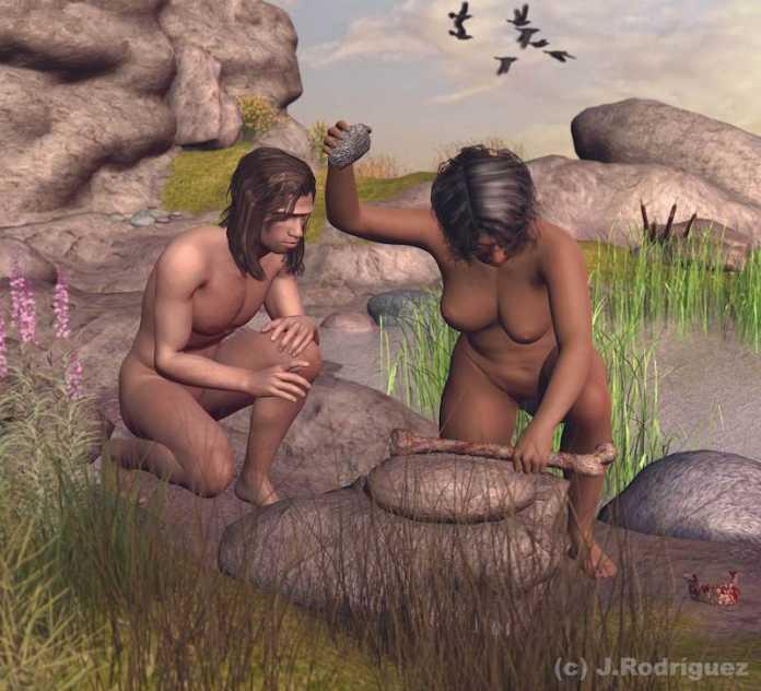 homo antecessor canibales