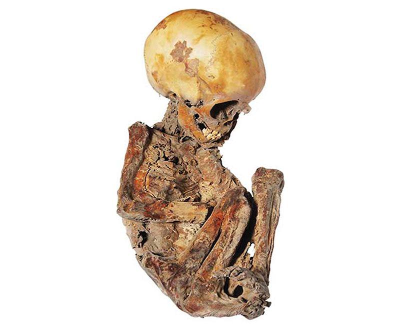 momia pepita de queretaro