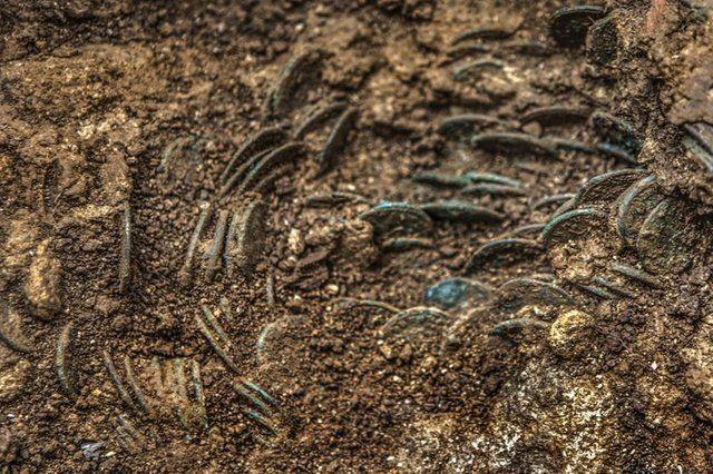 monedas romanas vindonissa