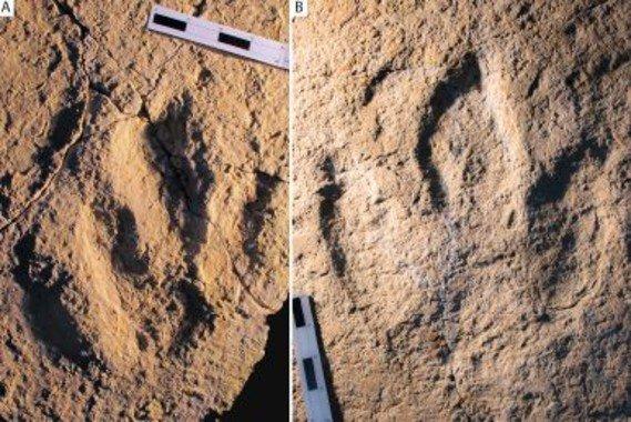 huellas dinosaurios europa y africa