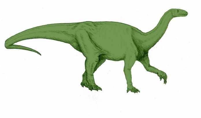dinosaurio camelotia