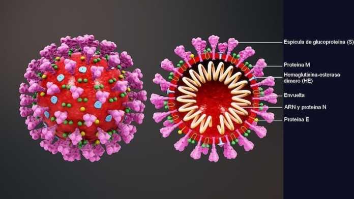 crisis coronavirus