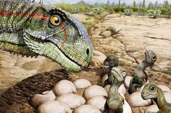 como eran los huevos de dinosaurio