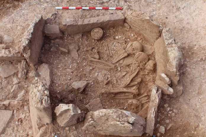 desenterrar muertos prehistoria