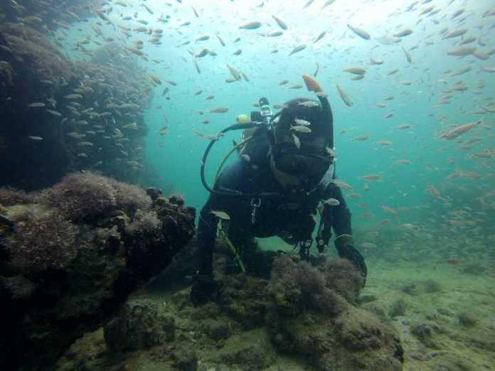 barco esclavos mayas mexico