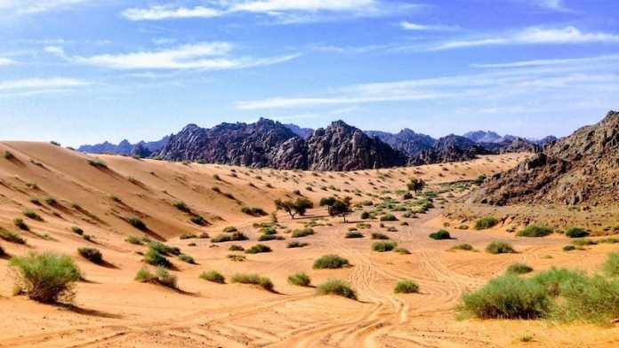 desierto nefud arabia