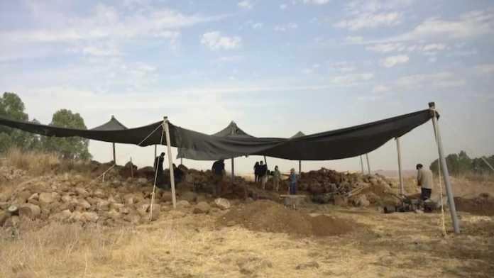 excavaciones geshur israel
