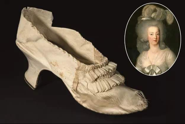 zapato maria antonieta