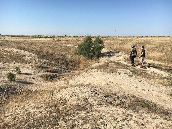 antiguo canal oasis kazajistan
