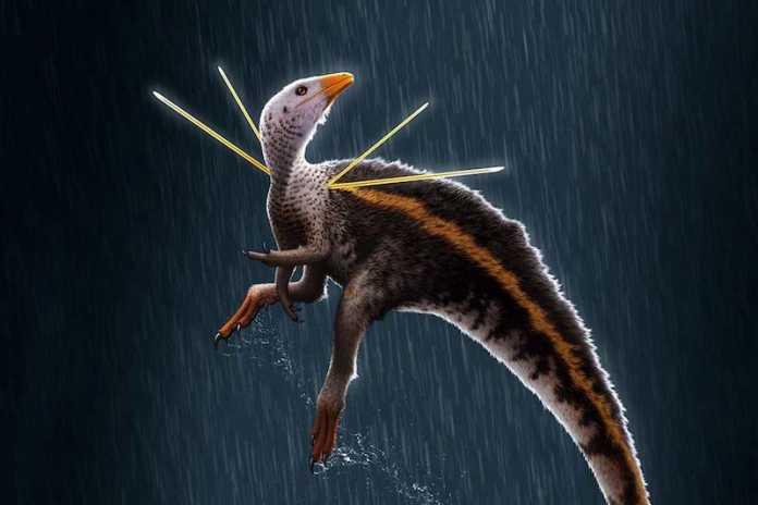 dinosaurio Ubirajara jubatus
