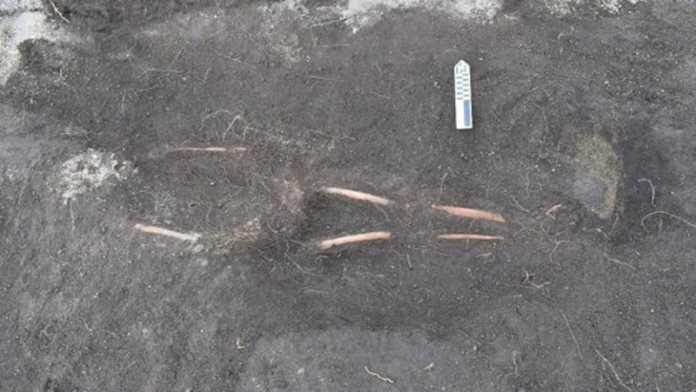 esqueleto cancha inca