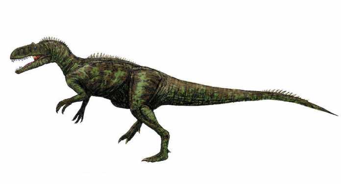 dinosaurio Chilantaisaurus
