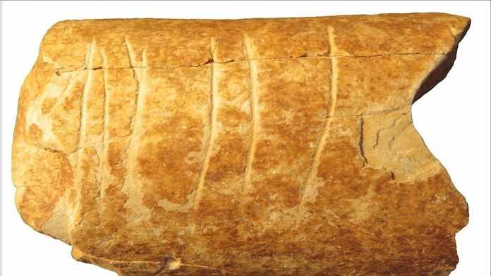 simbolos humanos prehistoria