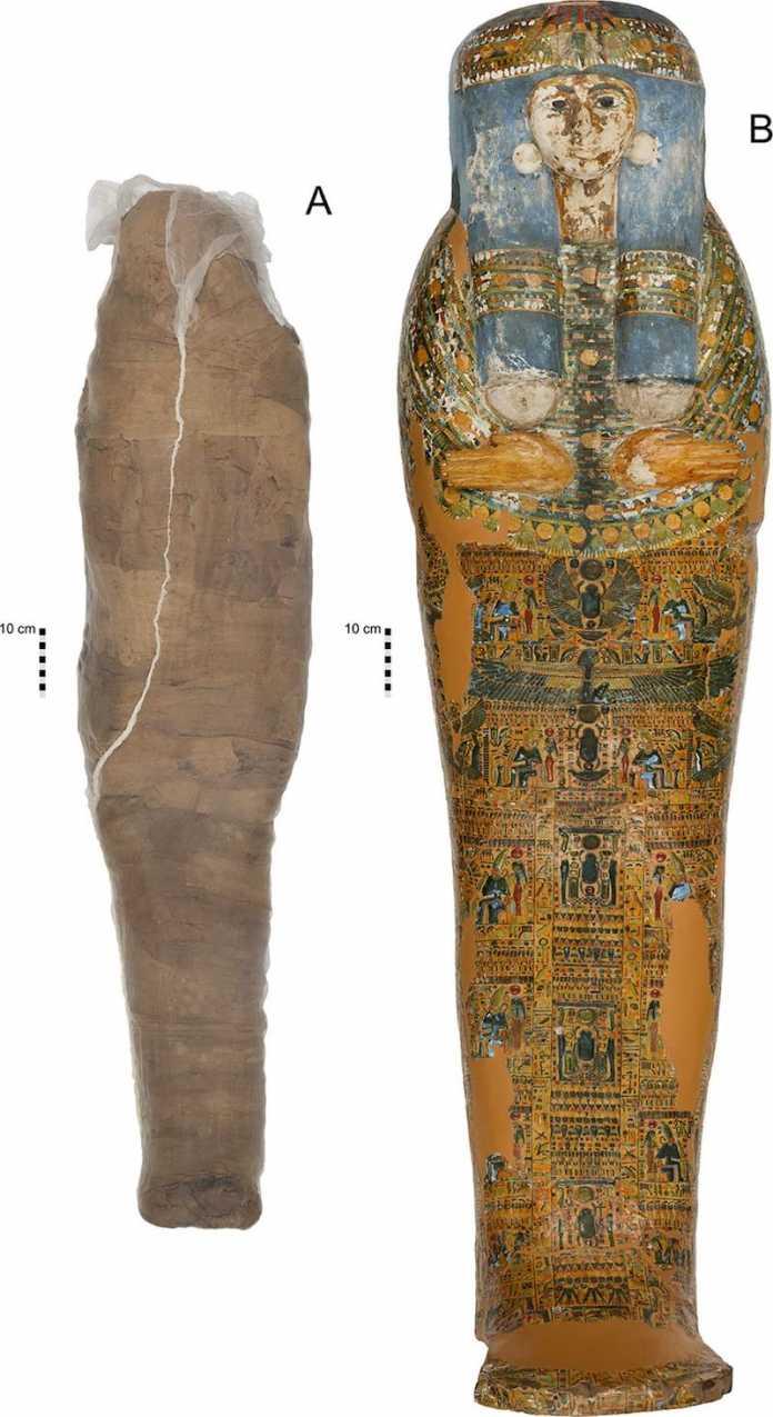 momia de barro encontrada egipto