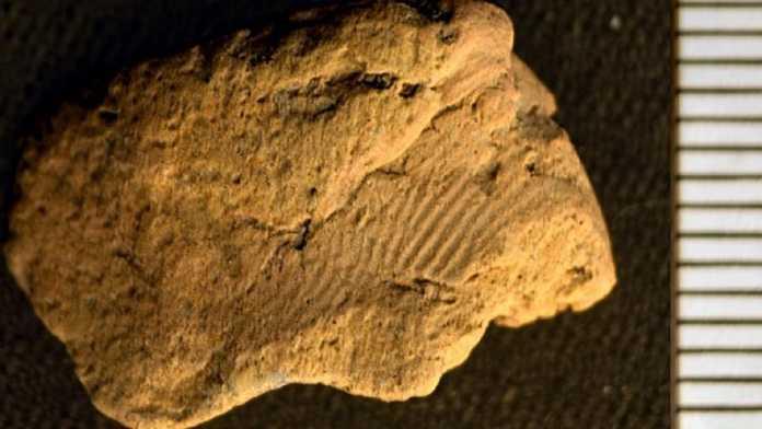 huella dactilar neolitica
