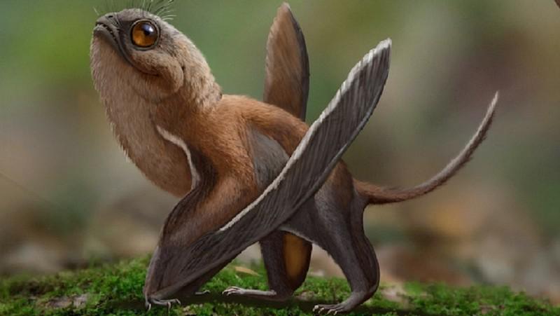 dinosaurio Sinomacrops