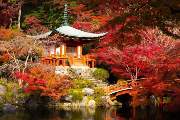 daigoji templo japon