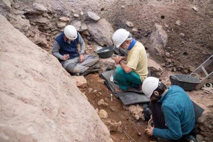 homo sapiens 14000 años lleida