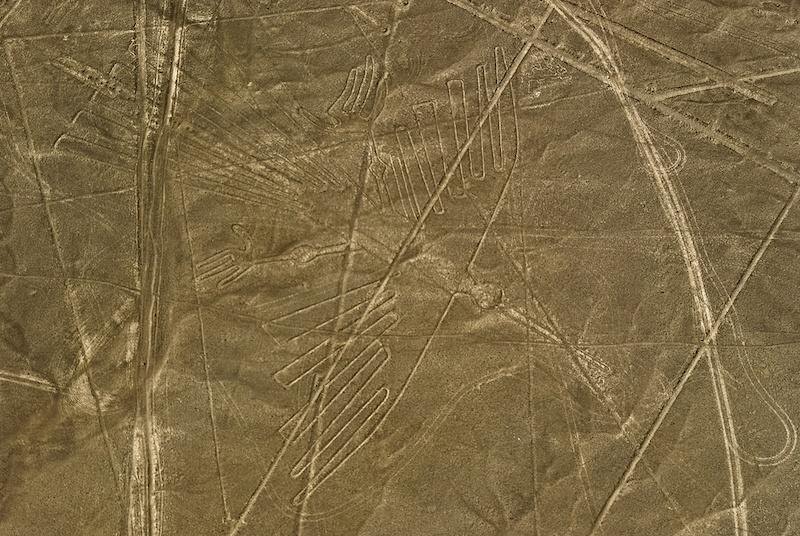 condor lineas nazca