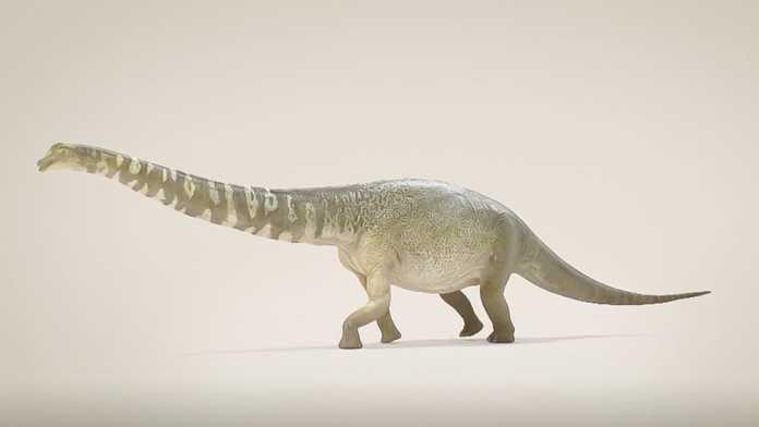 Australotitan dinosaurio australia